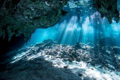 Cenoten, Gran Cenote, Mexiko, Tauchen, Yucatan-3