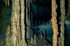 Cenoten, Dreamgate, Mexiko, Tauchen, Yucatan