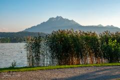 Sunset at Lake Lucerne