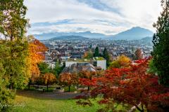 Aussicht auf Luzern
