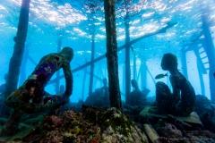 Pulau Pef, Raja Ampat-10